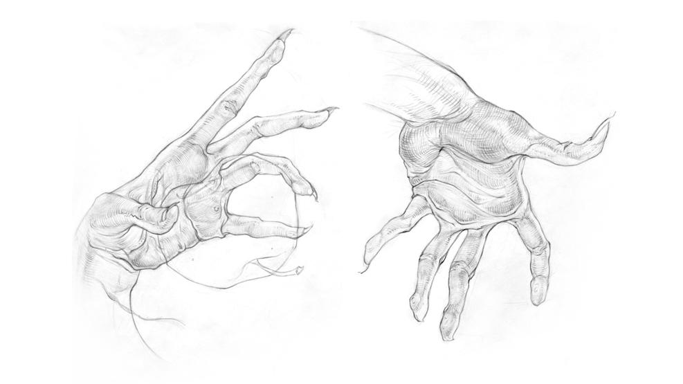 Работа студента курса «Рисунок»