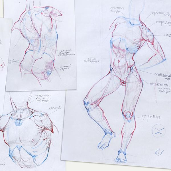 Азат Нургалеев. Рисование мужской фигуры.